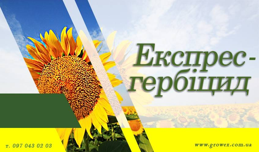 Экспресс - гербицид на подсолнечник экспресс Сан