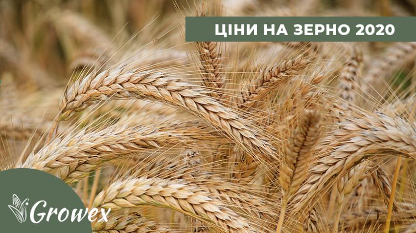 Цены на зерно. Ликвидация держрезерва. Филодия