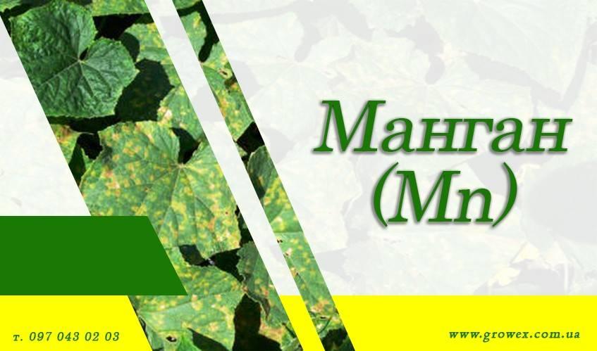 Марганец (Mn)